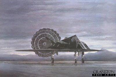 Black Jet by Michael Rondot.